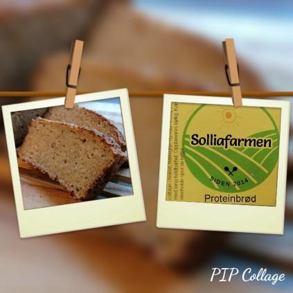 Glutenfritt proteinbrød